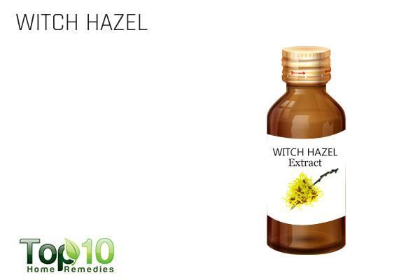 Witch hazel drying