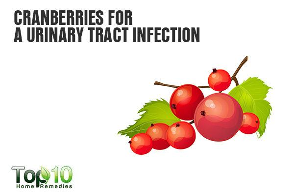 cranberries for urinary tract infection