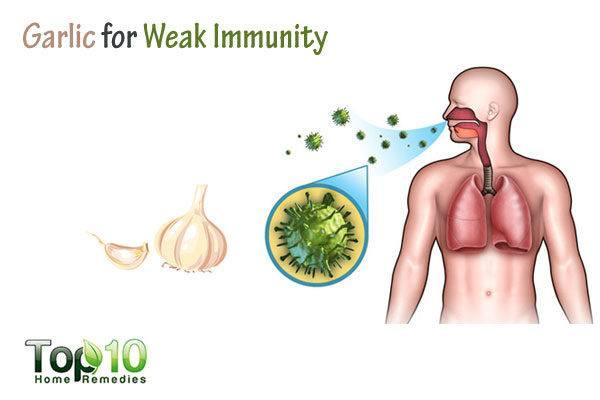 garlic fore weak immunity