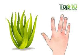 Evidence-Based Benefits of Aloe Vera for Health