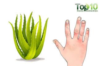 Evidence-Based Benefits of Aloe Vera for Health