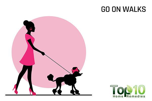 go walking with your dog