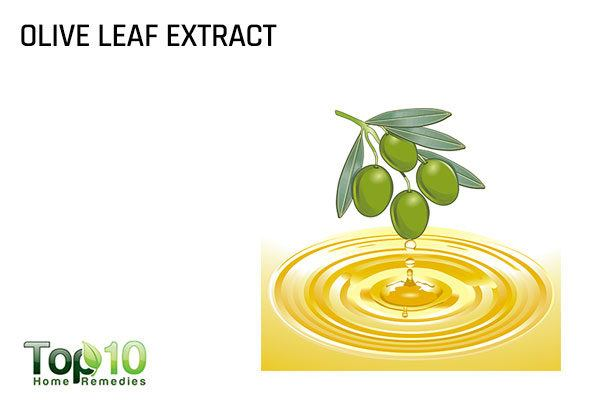 olive leaf extract for gonorrhea