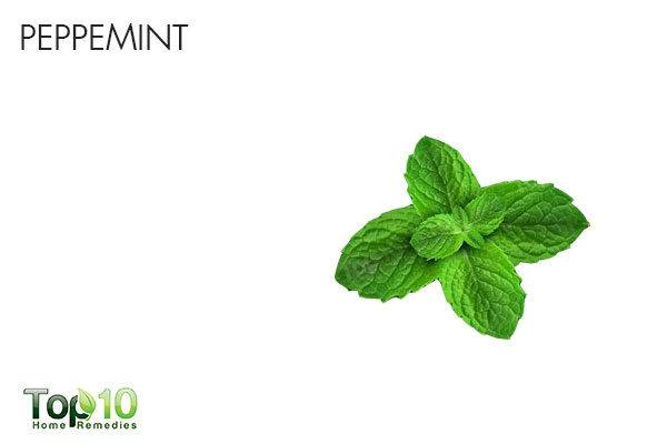 peppermint to reduce upper abdominal pain