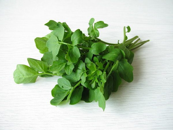 watercress low in calories