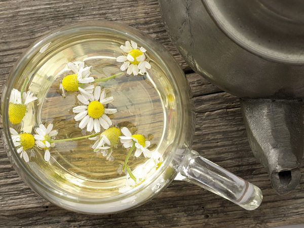 chamomile tea to relieve back pain