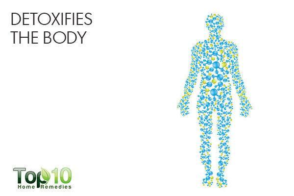 arugula detoxofoes the body