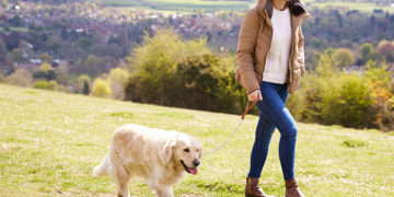 How a Daily Walk can Improve Your Dog's Health and Behaviour