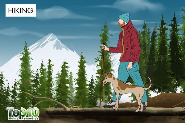 go hiking with your dog