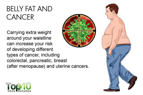 Belly fat and cancer
