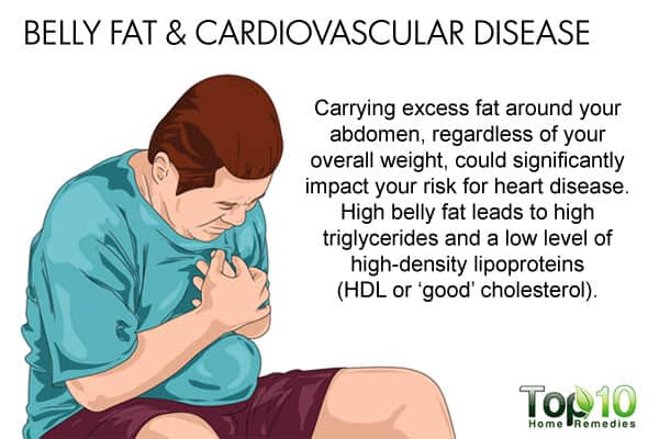 Belly fat and cardiovascular disease