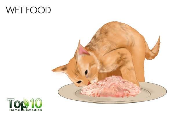 pics 5 Foods That Fight UTIs
