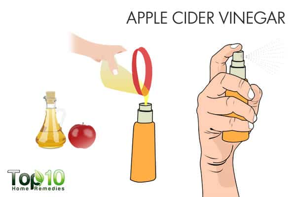 apple cider vinegar for ringworm of the scalp