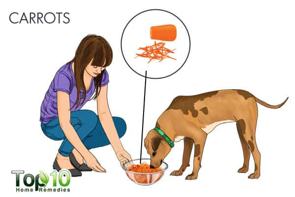 carrots for tapeworms in dogs