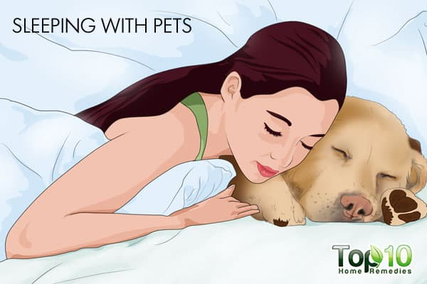 sleeping with pets may affect your sleep