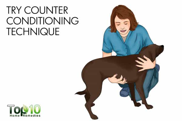 try counter conditioning to calm a dog suffering from thunderstorm phobia