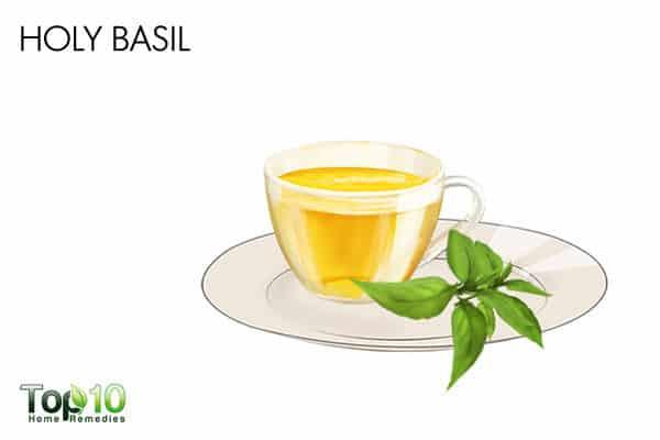 basil for gastroenteritis