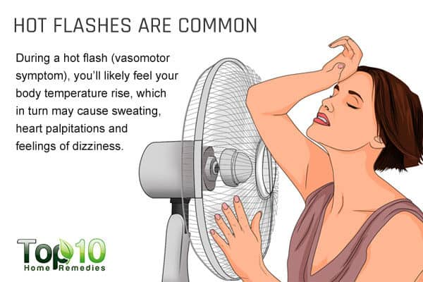 hot flashes are common during menopause