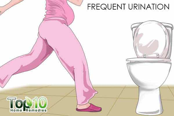 frequent urination during last trimester of pregnancy