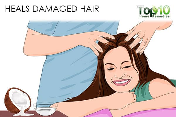 repair hair damage benefits of using coconut oil on hair