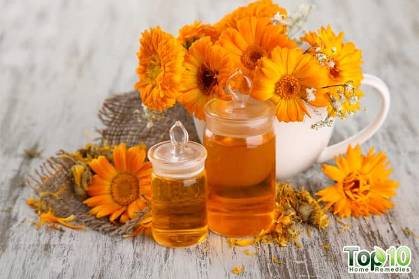 intro benefits of calendula flowers