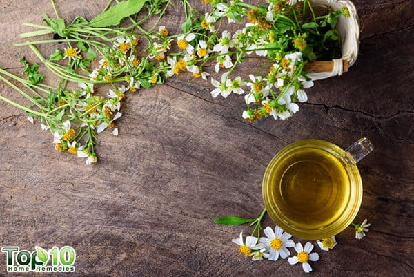 intro uses of chamomile for beauty purposes