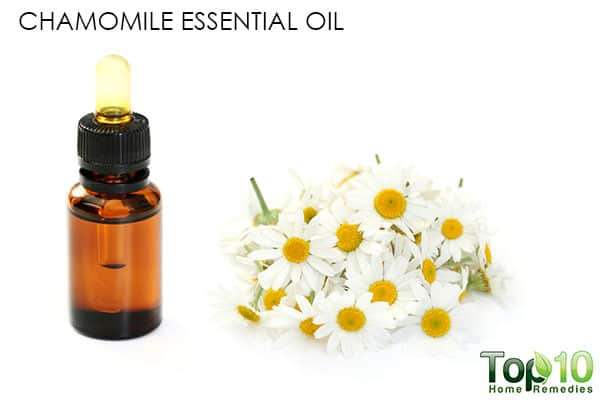 chamomile essential oil for hair loss