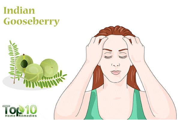 indian gooseberry treats hair loss