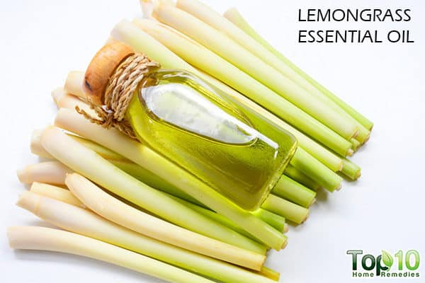 lemongrass oil for hair growth