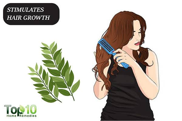 curry leaves stimulate hair growth