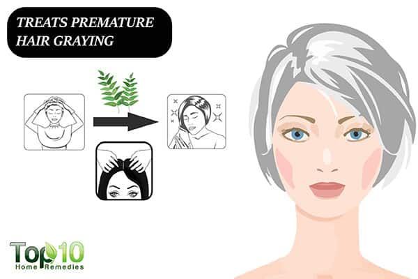 curry leaves treat premature graying of hair