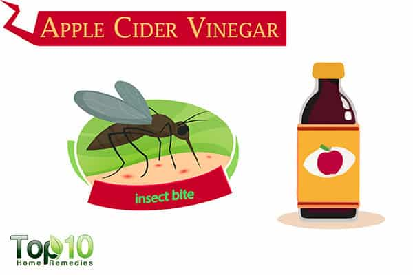 apple cider vinegar for insect bites