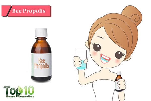 Bee propolis for receding gums