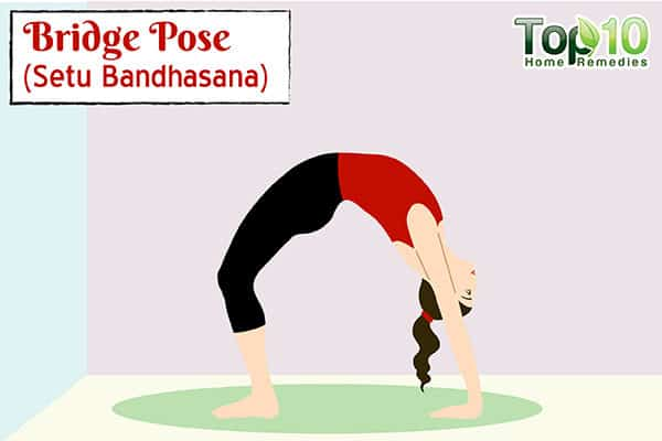 Bridge Pose (Setu Bandhasana) to stimulate metabolism