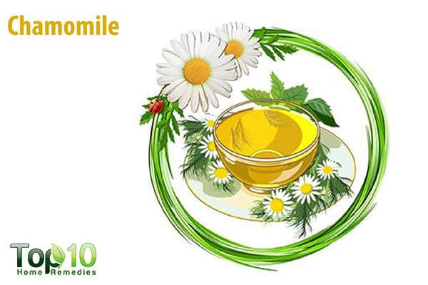 chamomile for itchy feet