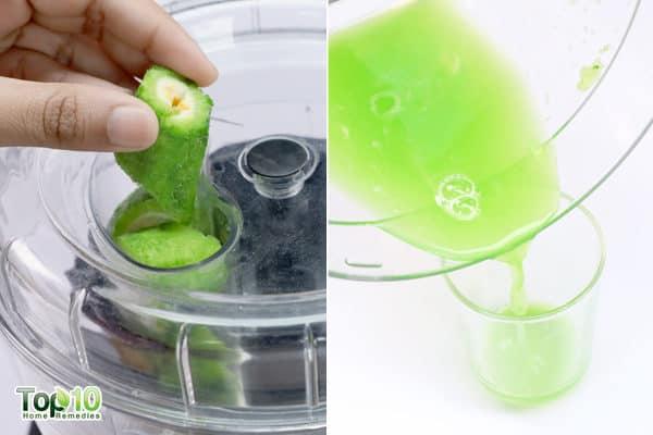 extract bitter gourd juice