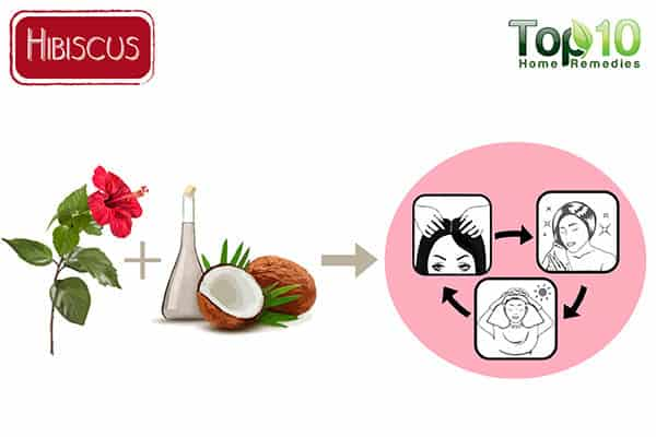 hibiscus for thinning hair