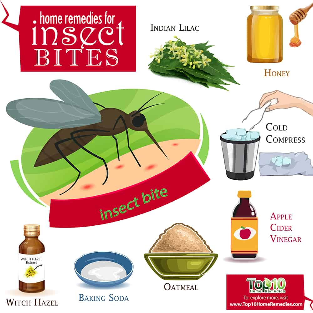 Professional and home remedies for mosquito bites. What helps really