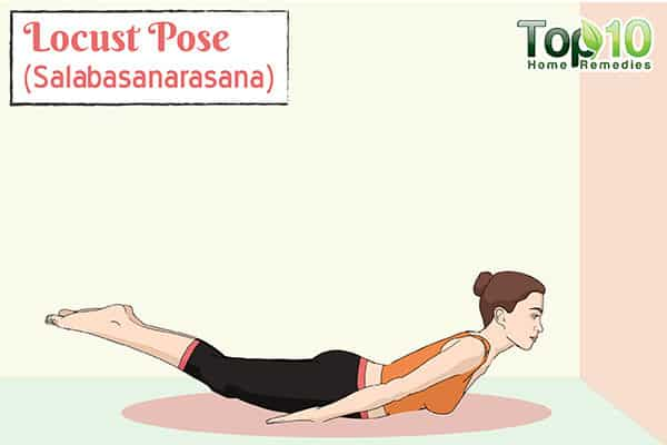 Locust Pose (Salabasana) boosts metabolism