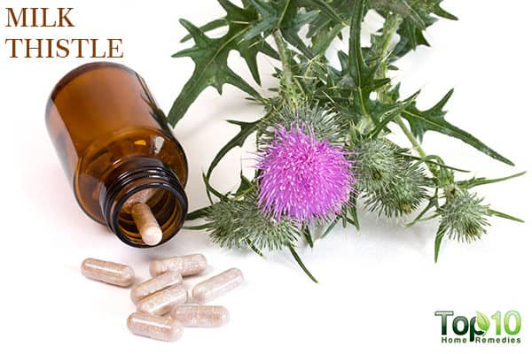milk thistle for fatty liver disease
