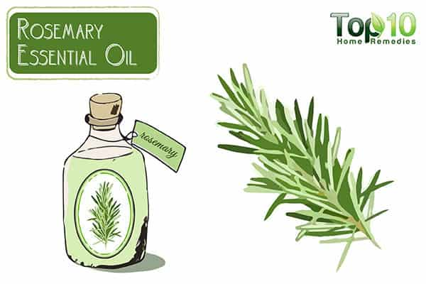 rosemary oil to stop thinning hair
