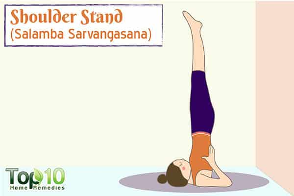 shoulder stand yoga pose for metabolism