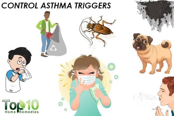 control asthma triggers