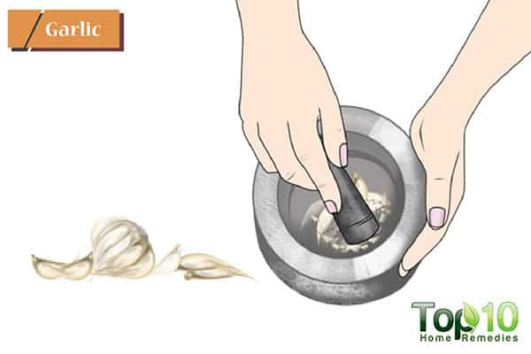 garlic to heal ulcers
