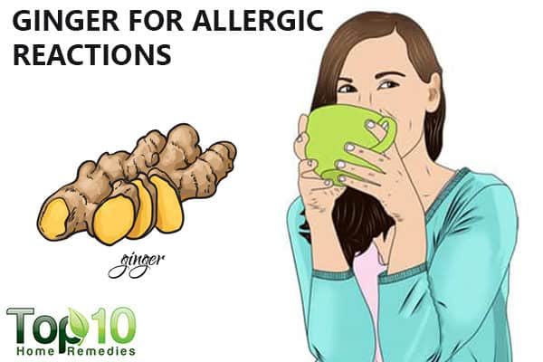 ginger for allergic reactions