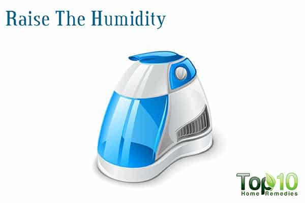 humidifier to treat sinus trouble