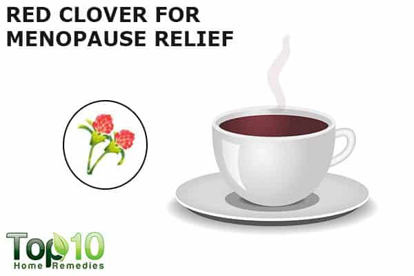 red clover to reduce menopausal symptoms