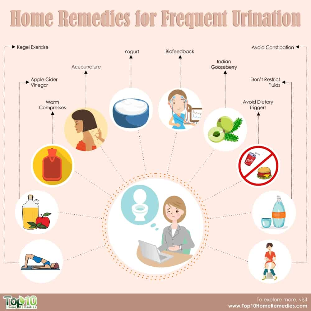 Home Remedies for Frequent Urination | Top 10 Home Remedies