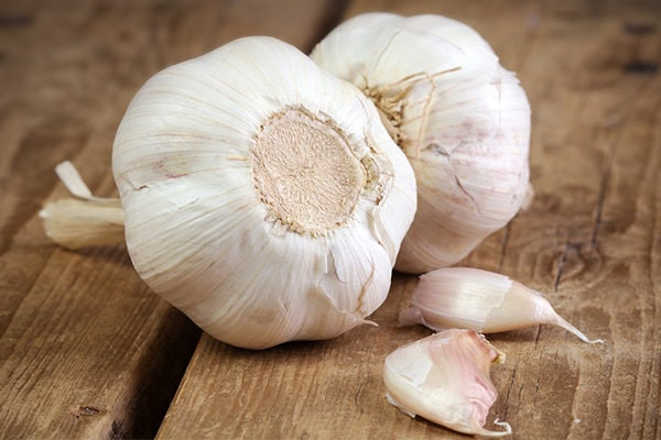 garlic for adenoids