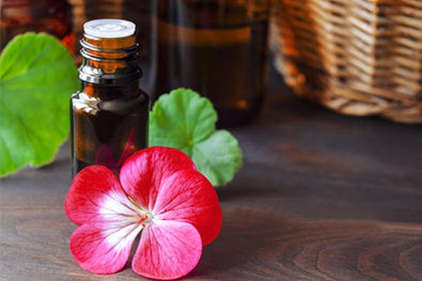 Geranium esential oil to fight wrinkles, age spots and signs of aging